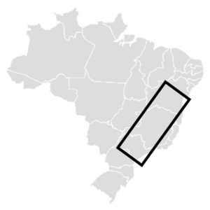 brazil origin