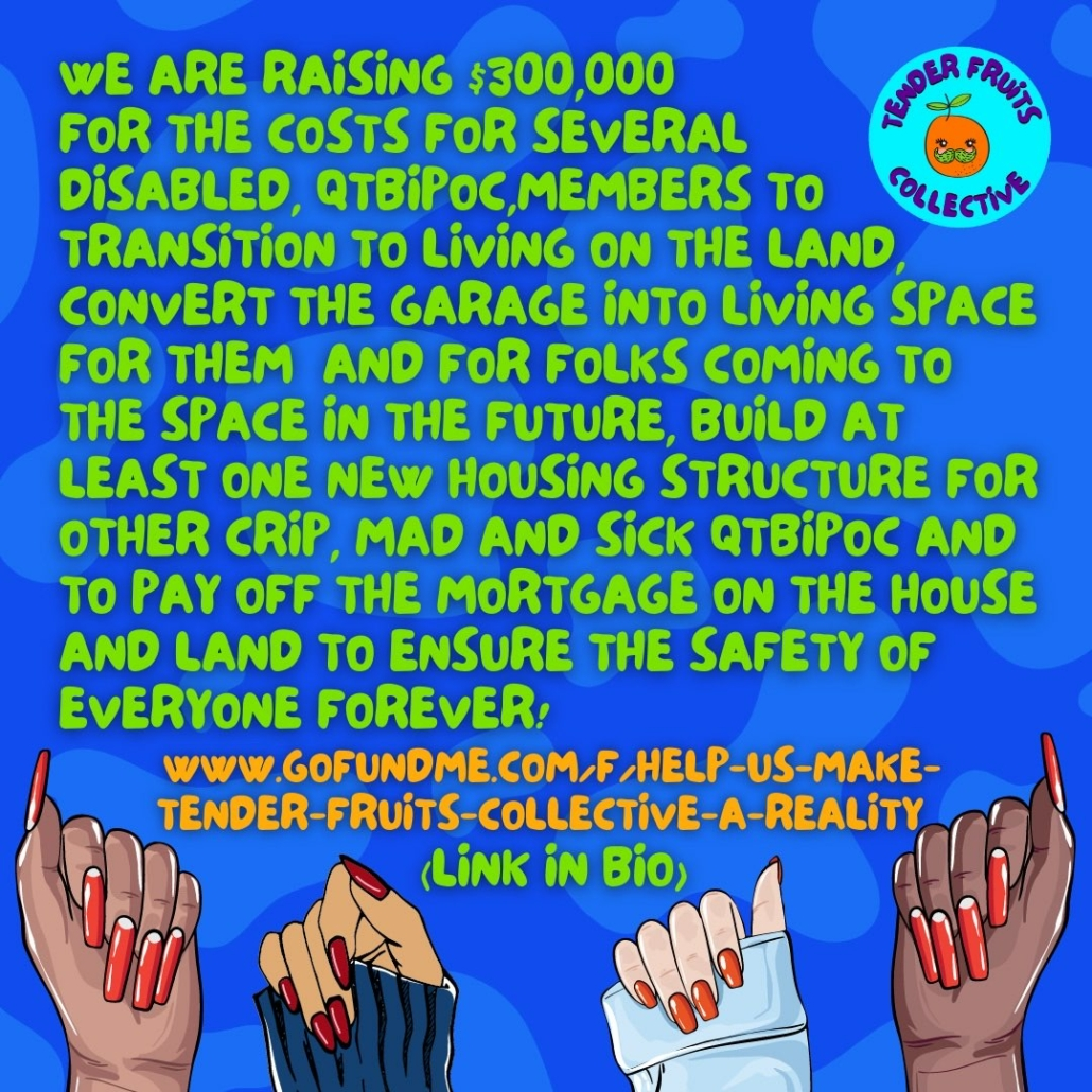 We are raising $300,000 for the costs for several Disabled QTBIPOC members to transition to living on the land, convert the garage into living space for them and for folks coming to the space in the future, build at least one new housing structure for another Crip, Mad, and Sick QTBIPOC and to pay off the mortgage on the house and land to sensure the safety of everyone forever! www.gofundme.com/f/help-us-make-tender-fruits-collective-a-reality (link in bio)